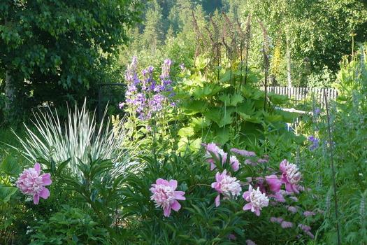 Пейзажный цветник