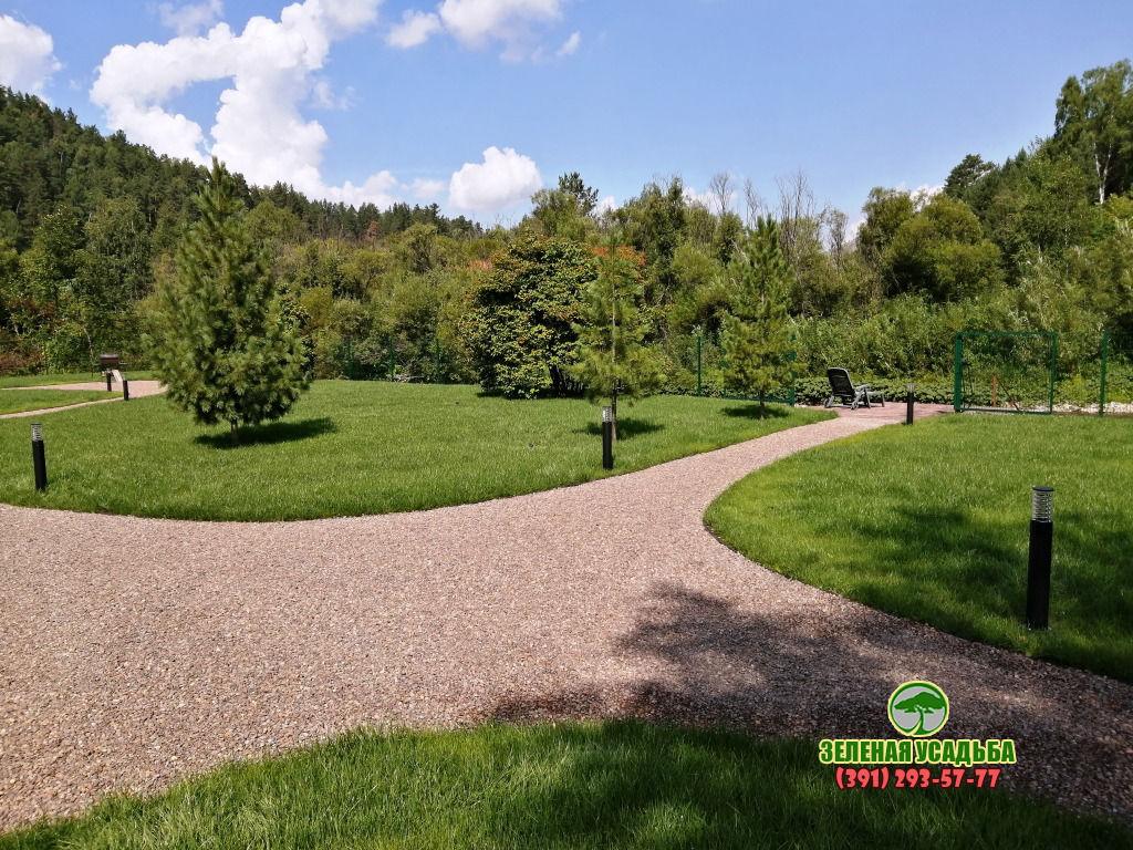 Зелёные просторы