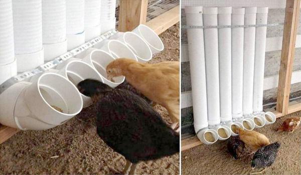 Кормушка для домашней птицы