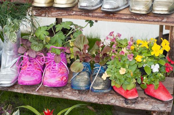цветы в обуви