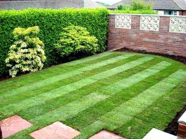 Чем хороши рулонные газоны?