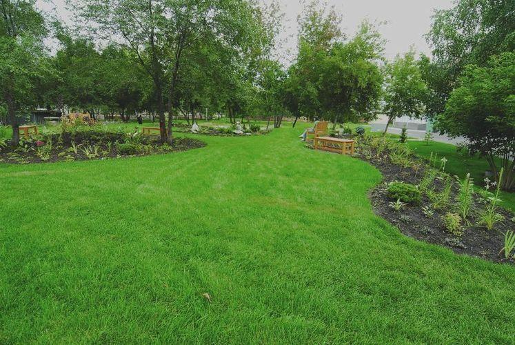 Рулонный газон: технология укладки