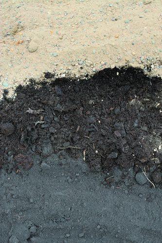 Подготовка почвы для газона