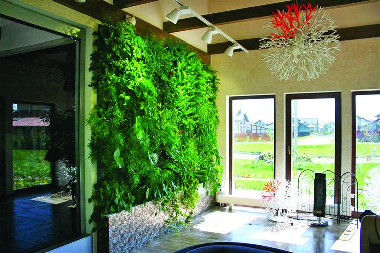 Озеленение балкона  СН 120402105624_0