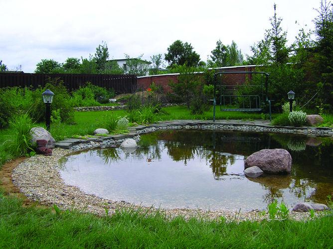Пруд и живая изгородь на участке