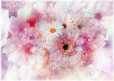 Фотообои белые цветы фотообои на