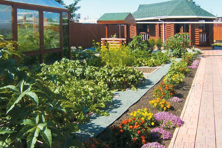 Сад и огород: одно другому не мешает