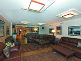 Чтобы сделать зону диванной более уютной, на пол положили два ковра с длинным ворсом шоколадно-пепельного оттенка.