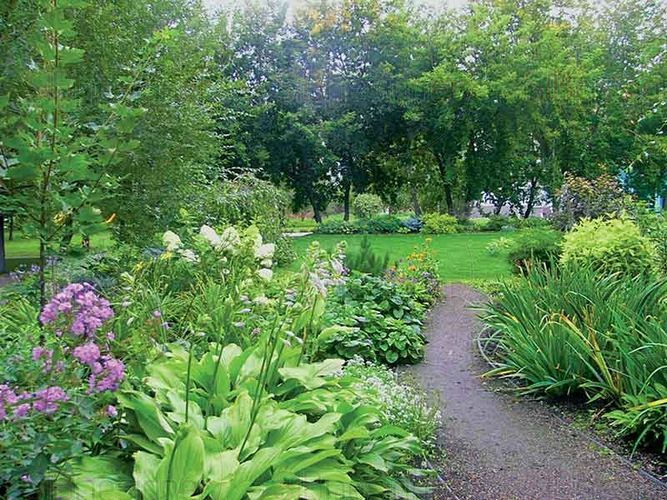 В городском саду