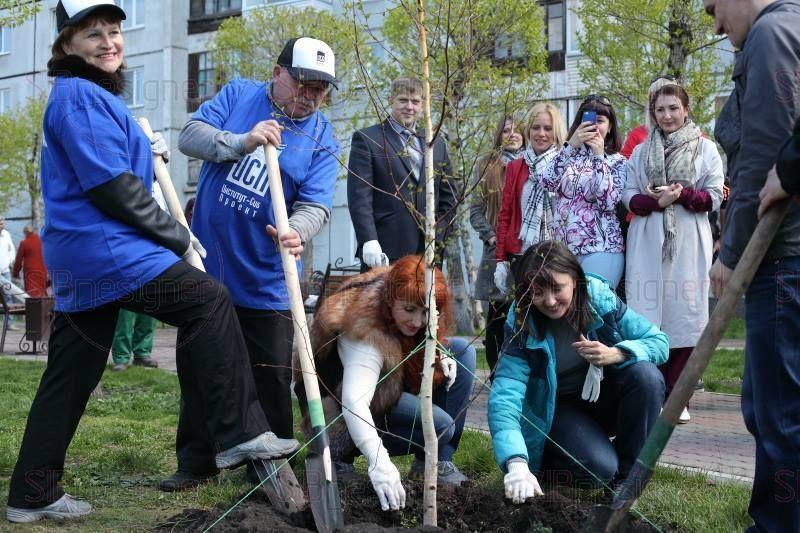 посади дерево с журналом Особняк