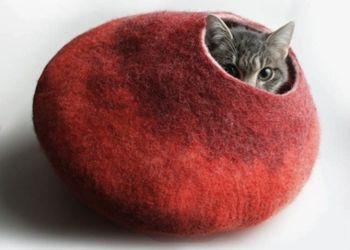 Кошачьи «спальни»