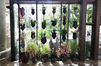 Сады-карусели
