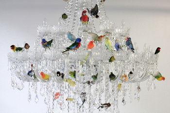Птичий приют