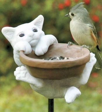 Птичье чаепитие
