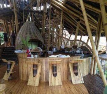 Сплошной бамбук