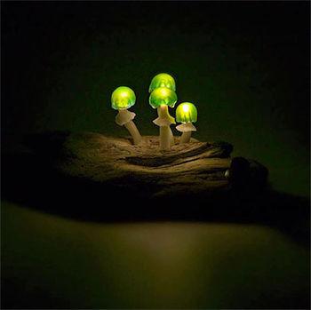 Яркая грибница
