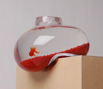 Искаженный аквариум