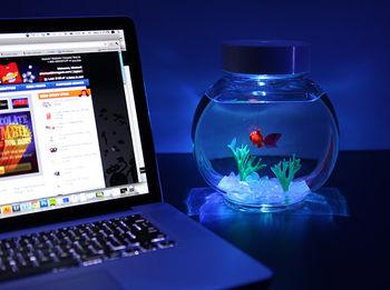 Электронная рыбка