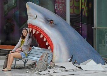 В пасти акулы