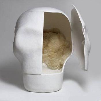 Уютный череп